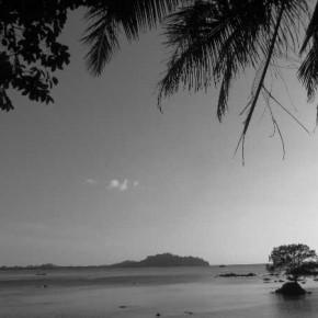 Logbuch Thailand - Geckos und Tukane